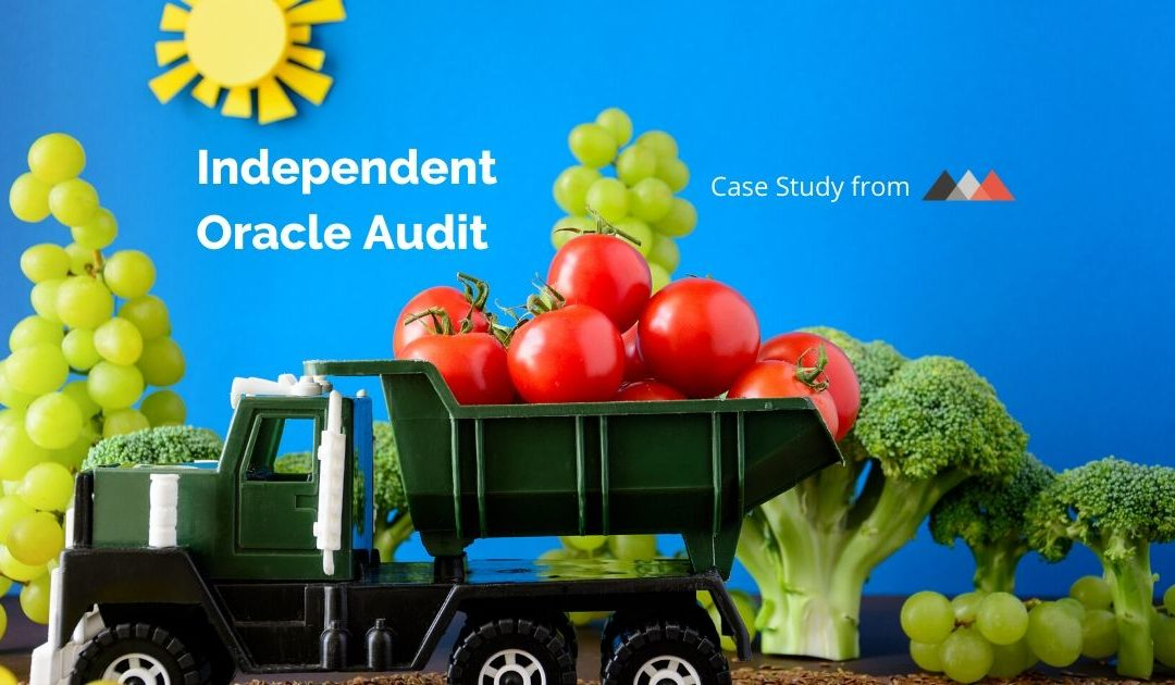 Independent Oracle Audit Case Study