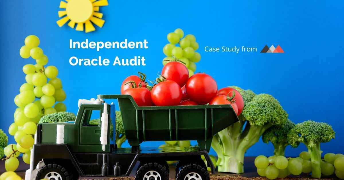 independent oracle audit