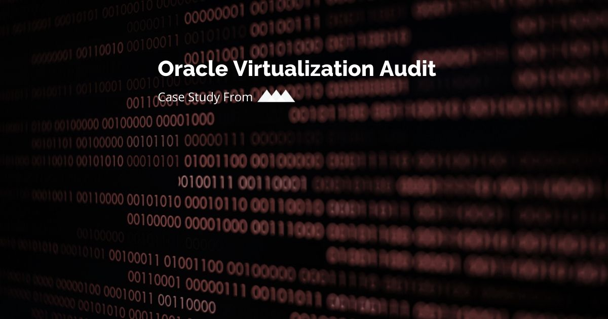 oracle virtualization audit