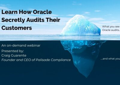 Learn How Oracle Secretly Audits